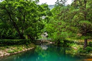 Natural scenery at CUHK